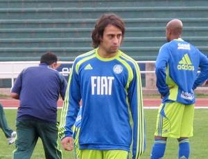 Valdivia Palmeiras