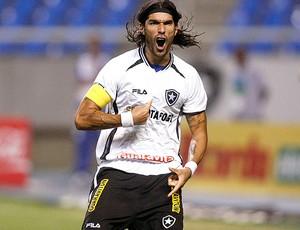 Loco Abreu gol Botafogo (Foto: Ag. Estado)