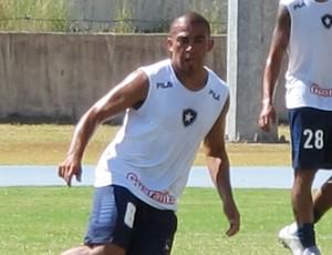 arevalo botafogo (Foto: Gustavo Rotstein/Globoesporte.com)