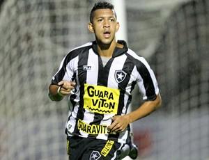 antonio carlos botafogo gol paraná (Foto: Huerle Andrey / Agância Estado)