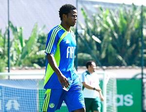Adriano Michael Jackson, do Palmeiras (Foto: Marcos Ribolli/ GLOBOESPORTE.COM)