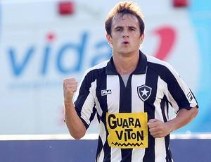 Lucas gol botafogo (Foto: Ag. Estado)