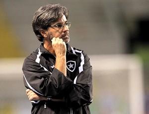 Caio Junior no jogo do Botafogo (Foto: Marcelo Theobald / Ag. O Globo)