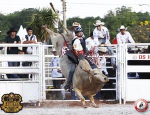 festa do peão rodeio internacional de barretos  (Foto: Divulgação)