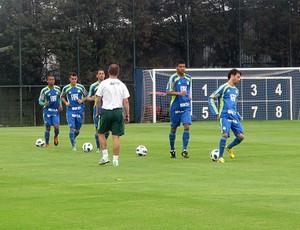 jogadores palmeiras treino (Foto: Diego Ribeiro / Globoesporte.com)