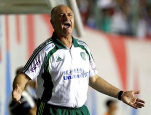 Scolari Felipão Palmeiras (Foto: Futura Press)