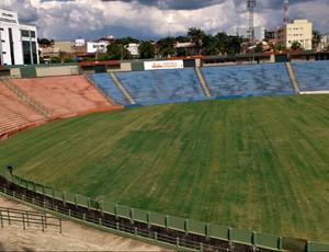 Estádio Uberabão já está com novo gramado (Foto: Luiz Vieira / GLOBOESPORTE.COM)