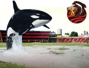 Ilha do Retiro - sport - humor (Foto: Reprodução)