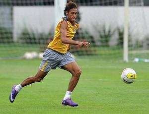 Neymar, do Santos (Foto: Ivan Storti/Divulgação Santos FC)