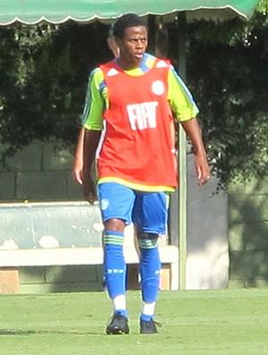 Adriano Michael Jackson treino Palmeiras (Foto: Diego Ribeiro / Globoesporte.com)