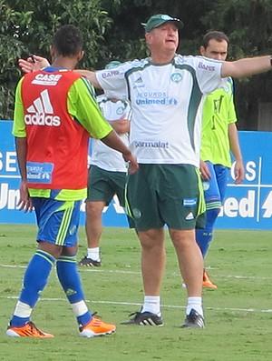Felipão Scolari treino Palmeiras (Foto: Diego Ribeiro / Globoesporte.com)