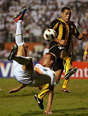 ze eduardo love  santos x peñarol (Foto: AP)