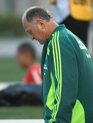 Felipão Scolari Palmeiras (Foto: Ag. Estado)