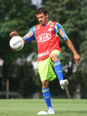 Román em treino do Palmeiras (Foto: Anderson Rodrigues / Globoesporte.com)