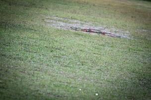 Gramado ficou impraticavel para jogar futebol (Foto: Filippe Araujo/Divulgação)