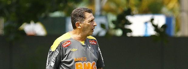 Tata, auxiliar técnico do Santos (Foto: Ricardo Saibun/Divulgação Santos FC)