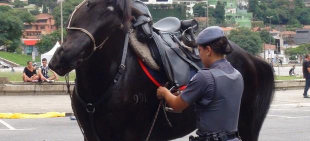 Polícia Militar; Pacaembu (Foto: Sergio Gandolphi/Globoesporte.com)