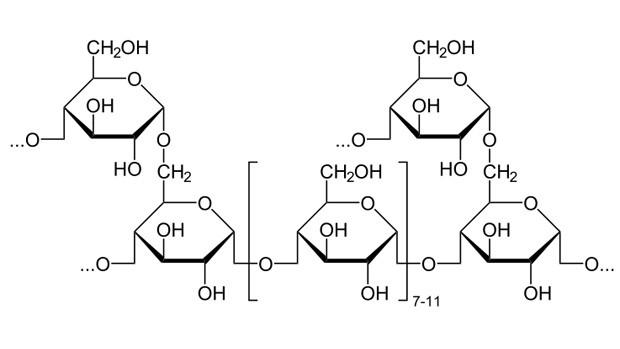 Corrida de rua  fórmula Glicogênio (Foto: Reprodução)