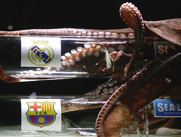 polvo iker  jogo entre Barcelona e real madrid (Foto: reprodução jornal AS)