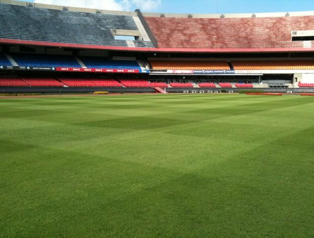 Gramado do Morumbi, estádio do São Paulo (Foto: Daniel Tapia - Divulgação)