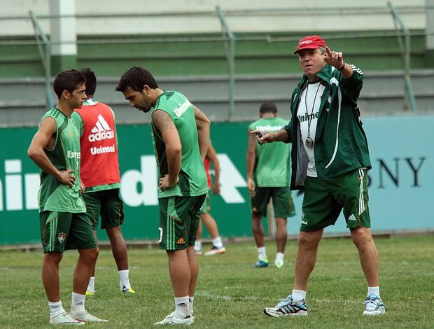 abel braga lanzini deco fluminense (Foto: Ralff Santos/FluminenseF.C.)