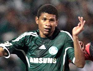 Marcio Araujo, Palmeiras