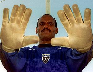 Wagner Botafogo Goleiro