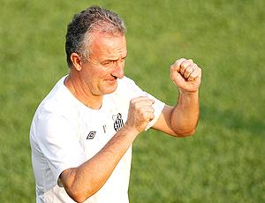Dorival Júnior técnico Santos