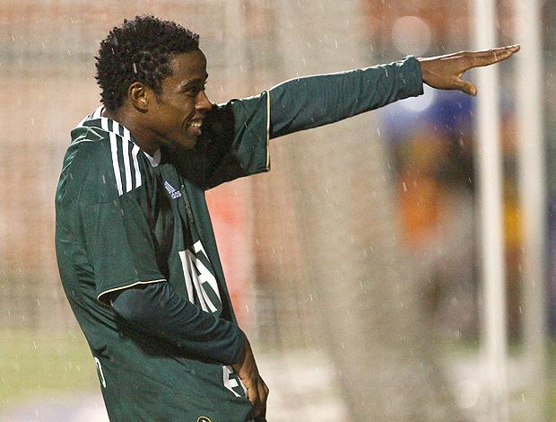 Adriano gol palmeiras (Foto: Ag. Estado)