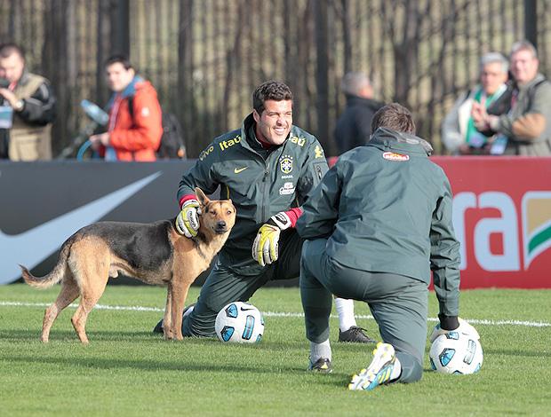 Cachorro Julio Cesar treino Seleção (Foto: Mowa Press)