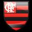 EScudo Flamengo (Foto: Editoria de Arte / Globoesporte.come)