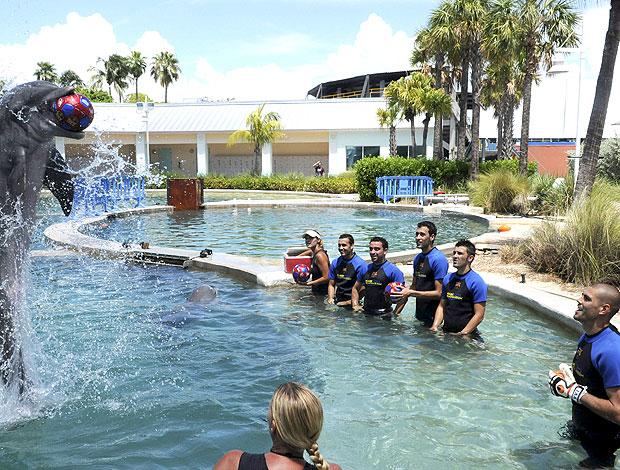 time do Barcelona nadando com golfinhos em Miami (Foto: EFE)