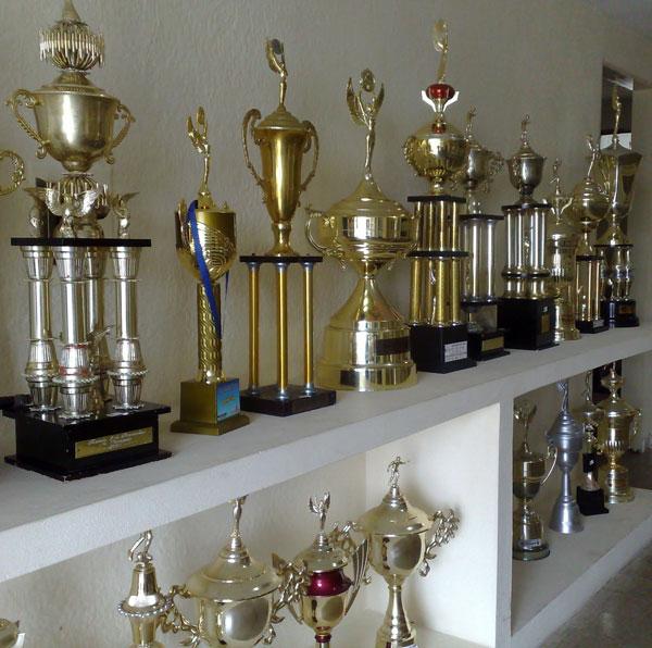 Sala de troféus do Botafogo mostra um passado glorioso (Foto: Divulgação)