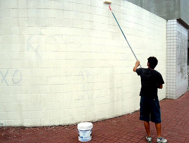 muro do Engenhão pichado contra o Botafogo (Foto: Thales Soares / Globoesporte.com)