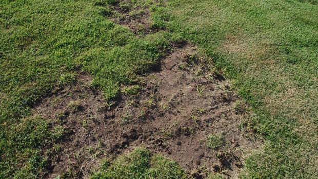 cratera no almeidão (Foto: Expedito Madruga)