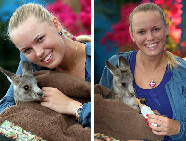 Caroline Wozniacki tênis Australian Open canguru (Foto: Reuters)