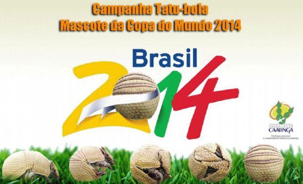 Campanha tatu-bola para mascote para Copa do Mundo de 2014 (Foto: Divulgação/Associação Caatinga)