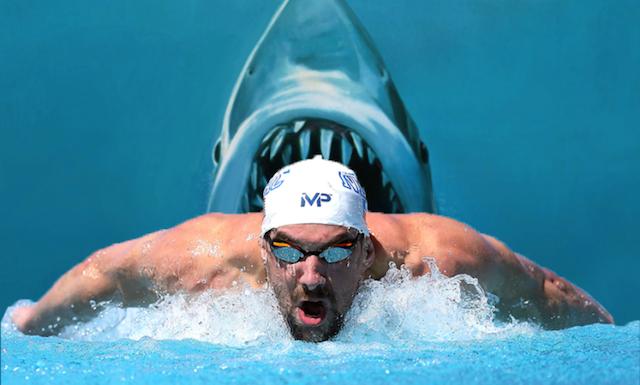 BLOG: Próximo desafio de Michael Phelps: nadar contra um tubarão branco!