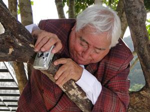 Ao subir a árvore ele fica com medo da altura