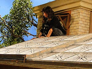 Rony Pear sobe no telhado para espionar Valenitm