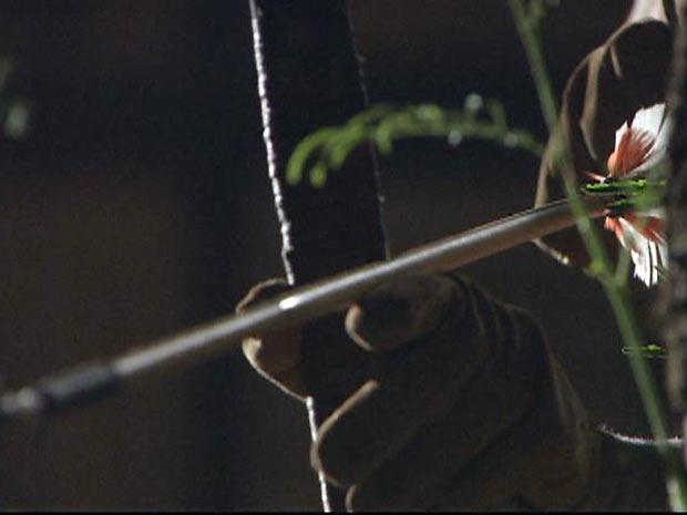 O arqueiro foca seu alvo