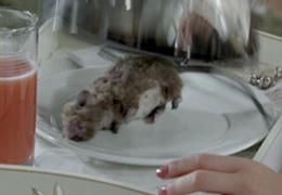 rato morto (Foto: finaestampa/tvglobo)