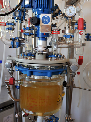 Biocombustível 2 Embrapa Abr Malhação (Foto: Valter Campanato / ABr)
