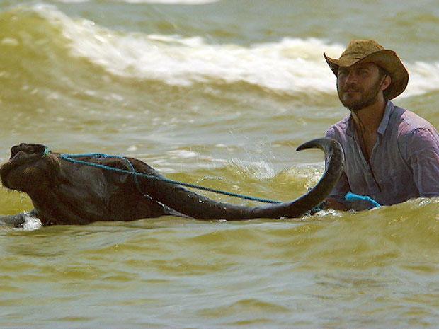Búfalo chegou a ficar apenas com a cabeça fora da água (Foto: Amor Eterno Amor/TV Globo)