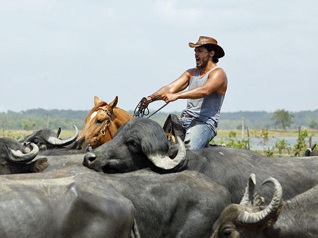 Raphael Viana conduz um rebanho de búfalos montado em um cavalo (Foto: Amor Eterno Amor/TV Globo)