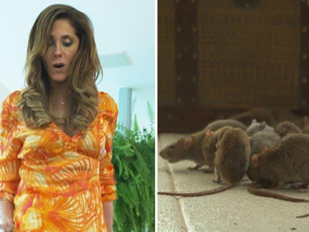 FINA ESTAMPA: Plano de Tereza Cristina dá errado e ela fica presa com ratos