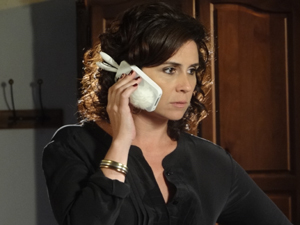 Capa de celular de coelhinho virou objeto de desejo (Foto: Aquele Beijo/TV Globo)