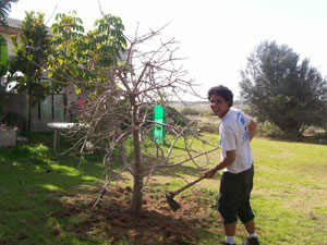Felipe no trabalho como jardineiro (Foto: Malhação / Tv Globo)