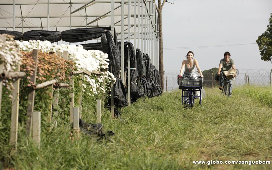 Bento e Giane chegam para mais um dia de trabalho nos campos de Holambra