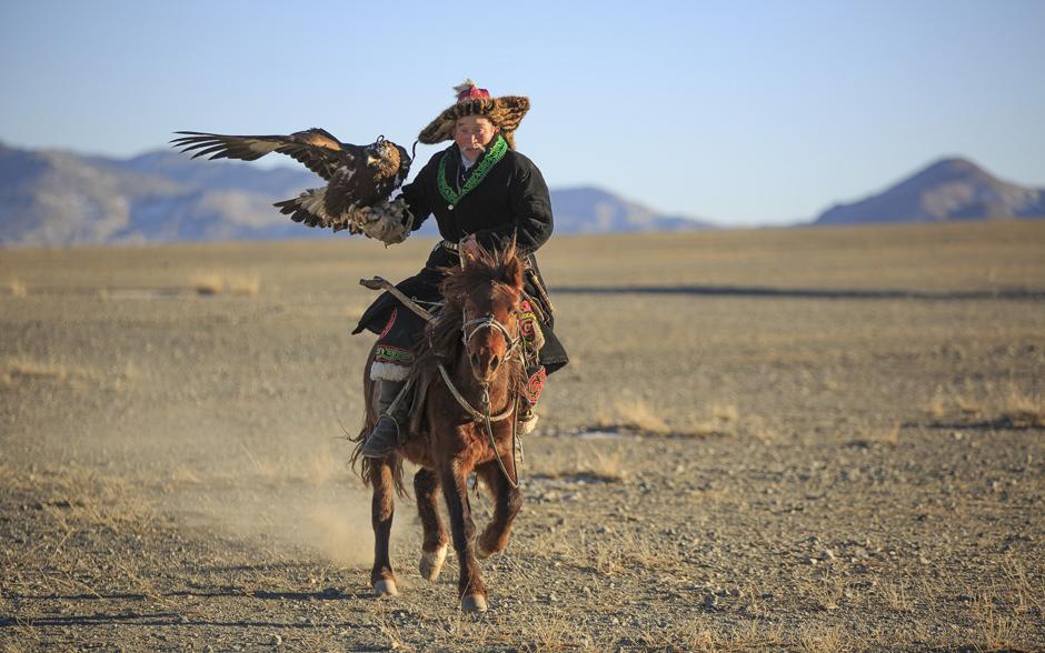 Arte de caçar com águias é milenar